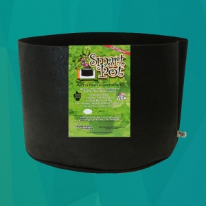 black smart pot no handles